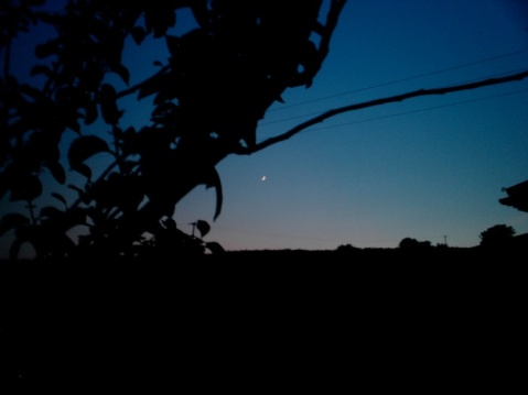 twilight, evening, silhouetted, dark blue sky, landscape, photo, photography, beauty, nature