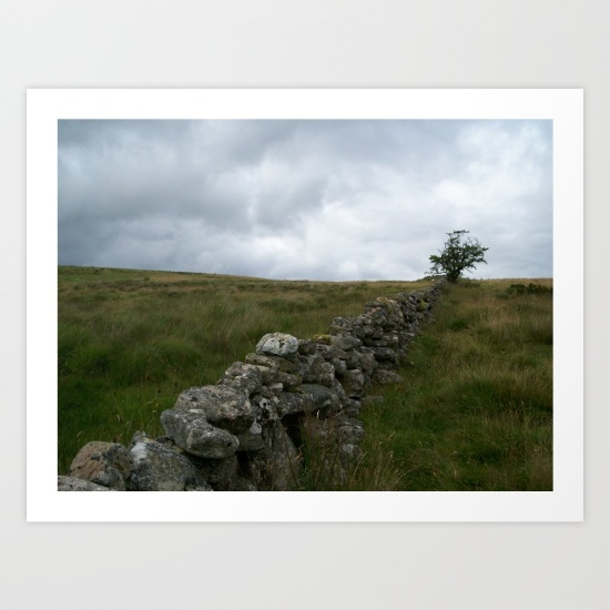 landscape, photo, photography, moors, moorland, farm wall, dry stone wall, isolation,