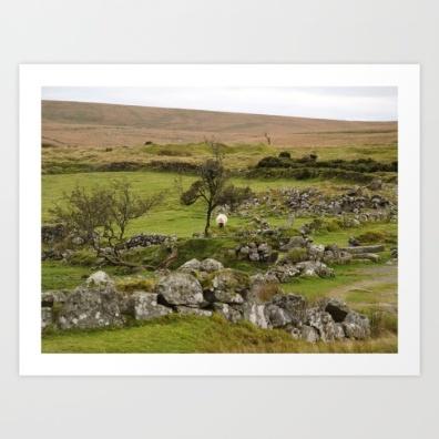 sheep, ruins, britain, moors, moorland, neolithic village,