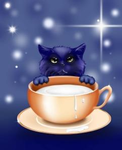 kitten-83660_1280